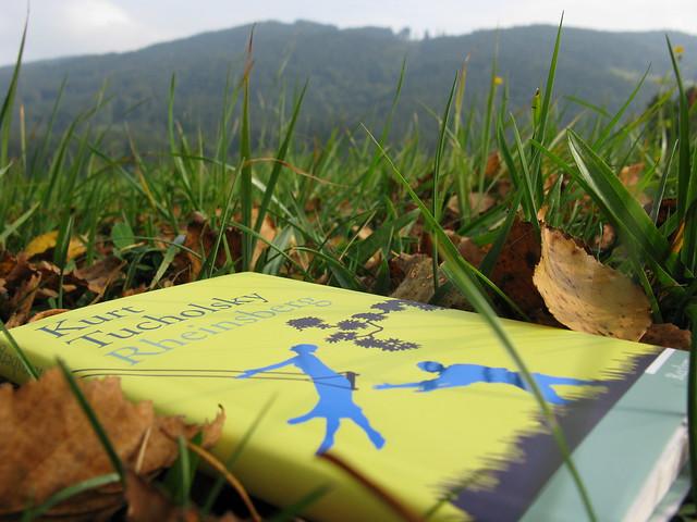 Book Buch LiteratureBook Buch Literatur