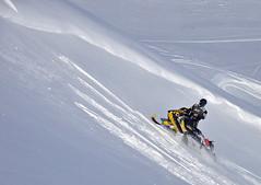 LAB604 F (kira97) Tags: lewis hills sleds