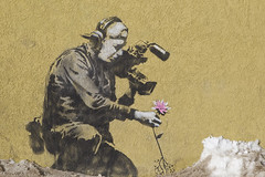 Banksy urban art video camera flower