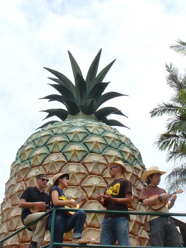 BIG PINEAPPLE!!!!!!