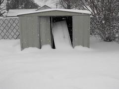Snow around the yard