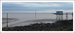 Talmont-sur-Gironde (Pascale Dupuis) Tags: mer france charente talmont carrelet charentemaritime nikond60 vitaline allrightsreserved©pascaledupuis