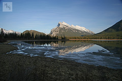 Mount Rundle, Banff (Mikey Stephens) Tags: trees snow forest rockies canadian banff mountrundle waterreflection vermillionlakes