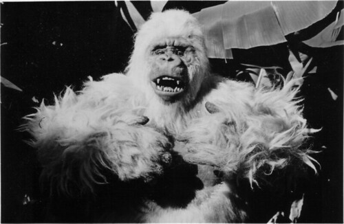THE IVORY APE (1980) Promotional Photo