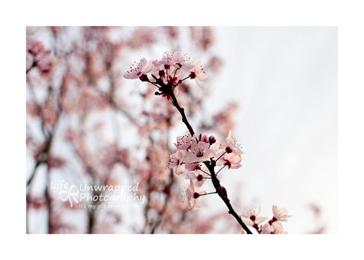 Feb1310_0042ew