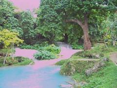 Vanuatu waterfall 3