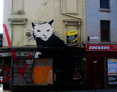 a genuine banksy-Berry Street Liverpool