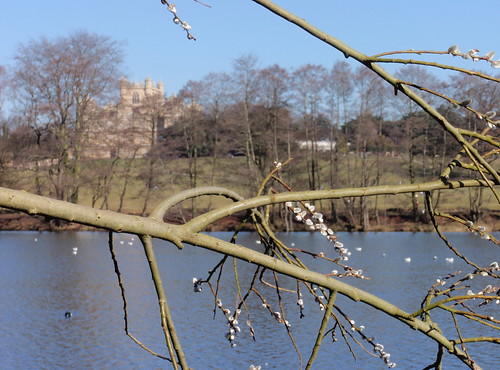 Wollaton lake