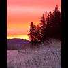 Trout Lake, Washington (Jesse Estes) Tags: sunrise washington troutlake 5dii jesseestesphotography