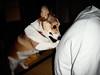 massage (moaan) Tags: dog corgi welshcorgi pochiko gettyimagesjapanq1 gettyimagesjapanq2