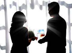Happy new year (DeLaRam.) Tags: light boy fish love girl silhouette wall feast spring newyear explore iranian lovely nourooz بهار arman zoroastrian 1389 خورشیدی نوروزباستانی