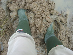 S6001440 (solentbill) Tags: mud wellies neogalloway