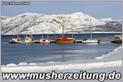 Finnmarkslopet: Alta-Norway