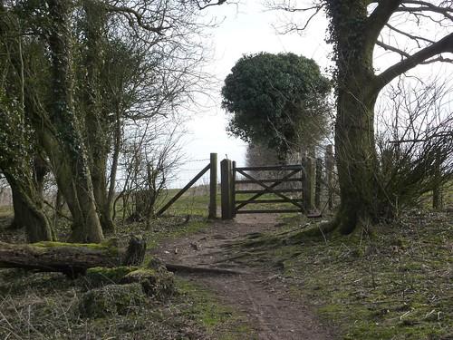 Leaving Bunkershill Plantation