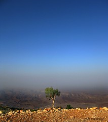 View from Gorakh Hill Top (Tanwir Jogi) Tags: road sky mist mountain tree water town view top hill it where cannon dadu juhi range sind sindh nadeem roshan highest snows wahi shabbir gorak balochistan g9 pandi gorakh gorag khuzdar tanwir keerthar trekkerz barohi naigaj gajriver