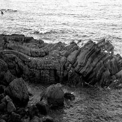 IMG_1763 (enazul) Tags: naturaleza blanco y negro fotografia cuidad aficionado artstica