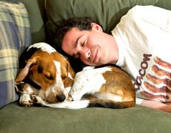 302/365 Floyd isn't in the mood (Paguma / Darren) Tags: dog man male me hound tired floyd tamronspaf1750mmf28xrdiiildasphericalif