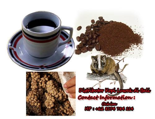 distributor kopi luwak di bali