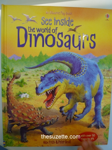 Dinosaur book - outside