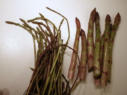 Wild and cultivated green asparagus