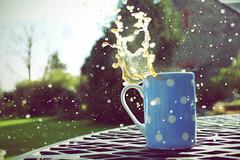 Splash III (ethan) Tags: blue white coffee garden drops spotty freeze frame mug splash liquid coffeesplash