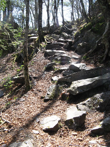 Big Pinnacle Trail