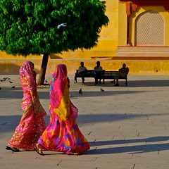 Strolling - Amber Fort - Jaipur, Rajasthan (L F Ramos-Reyes) Tags: red orange brown india tree men green colors yellow wall bench walking square women asia arch shadows pigeons gray highlights jaipur rajasthan amberfort strolling sarees rajasthani blueribbonwinner greatphotographers platinumheartaward rubyphotographer colorfullaward flickraward theauthorsplaza