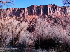 Highway 128 Near Moab UT 03 (blevatech) Tags: utah sand desert deadhorsepoint moab redrock archesnationalpark raven canyons goodlight