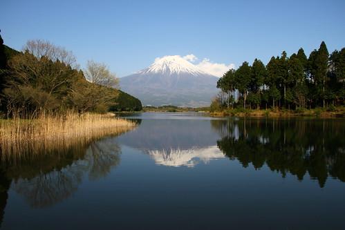 20100501-03(Sizuoka Trip)