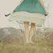 she twirls by threelittlebirds {Mindy J}