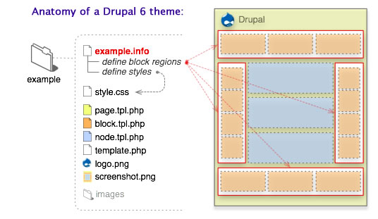 Drupal themes for you