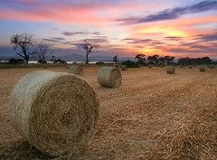 The good ol' bales (CostaDinos) Tags: sunset motion blur nature clouds rural landscape long exposure salt harvest straw cyprus saltlake crop bales bale larnaca larnaka lale stavrovouni