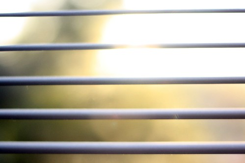 Sunshine Blinds