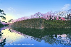 Sunrise at Hirosaki Castle. Japan.  Glenn Waters 2,200 visits to this photo.  Thank you. (Glenn Waters in Japan.) Tags: trees sky castle water festival japan clouds sunrise reflections japanese spring nikon aomori   sakura cherryblossoms hirosaki  moat   japon mothersday    japanesecastle     d700  nikond700  glennwaters photosjapan