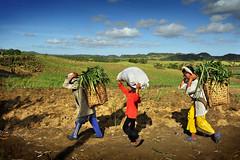 BogoCebu-21 (highlights.photo) Tags: landscape asian asia philippines landmarks cebu filipino filipina visayas bogo bogocity cebunorth