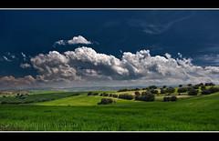 Otra de los campos de Murcia I (muliterno) Tags: murcia campos losroyos