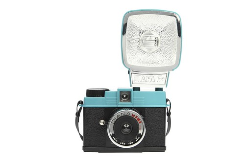 Diana mini camera and flash