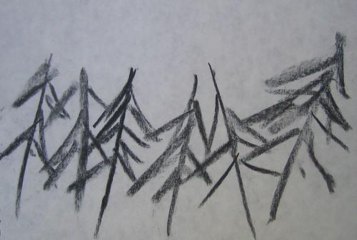 Trees drawings by Matthew Felix Sun 1