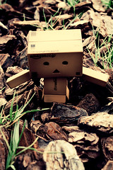 . () Tags: search danbo