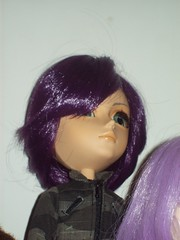 Falcon-James (dreams of Violets) Tags: toys dolls barbie pullip blythe