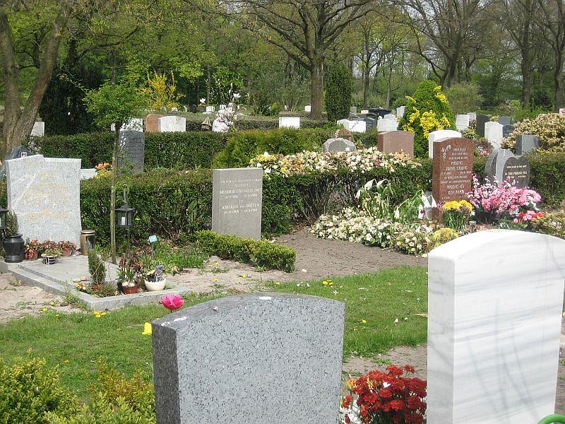 Daelwijck cemetery, Utrecht
