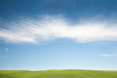 Cirrus over Green Hill (Chicken) Tags: blue sky usa cloud green texture beautiful grass landscape washington peaceful farmland minimal hills getty agriculture lightgreen cirrus palouse