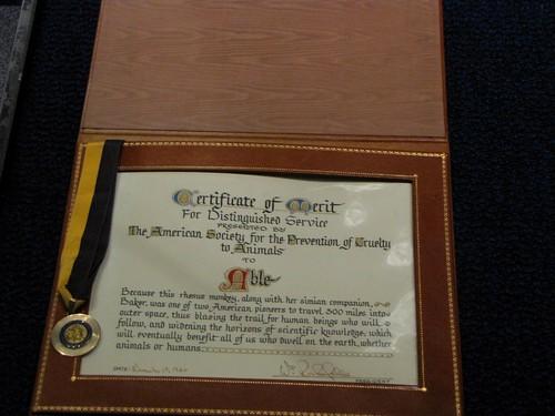 Certificate of Monkey Merit