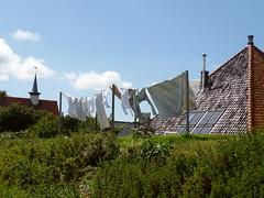 (Gastev) Tags: netherlands laundry dijk dike markermeer uitdam