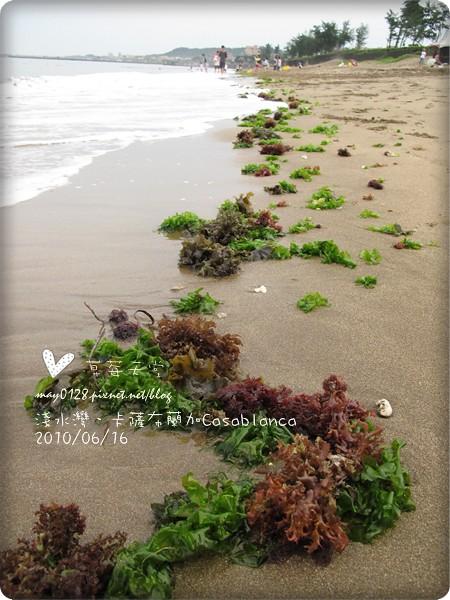 卡薩布蘭加14-2010.06.16