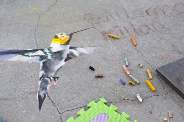 Chalk Festival Humming Bird