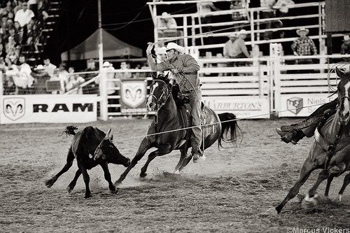 Pleasant Grove Rodeo, 2010