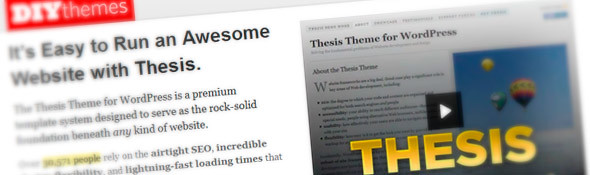 DIYthemes - Thesis WordPress Theme