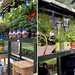 Robust Staging & Shelving in the Tradition 6 Greenhouse