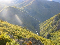 Montagne (Domi Rolland ) Tags: france nature montagne automne europe lumire gard languedocroussillon sauvage montaigoual